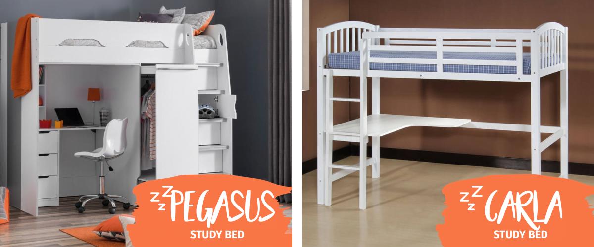 Loft Beds & Study Beds